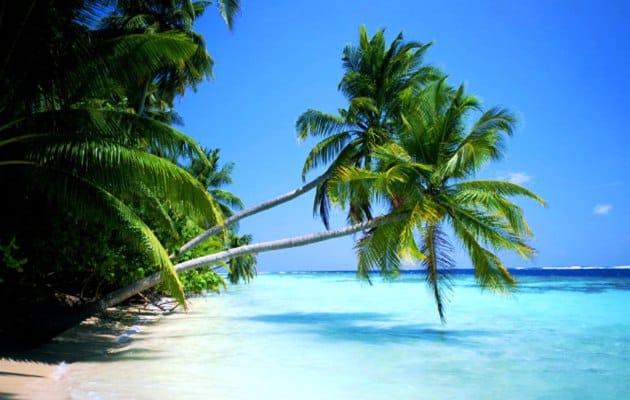 Caribe - Lua de Mel - Por S2 Vistos