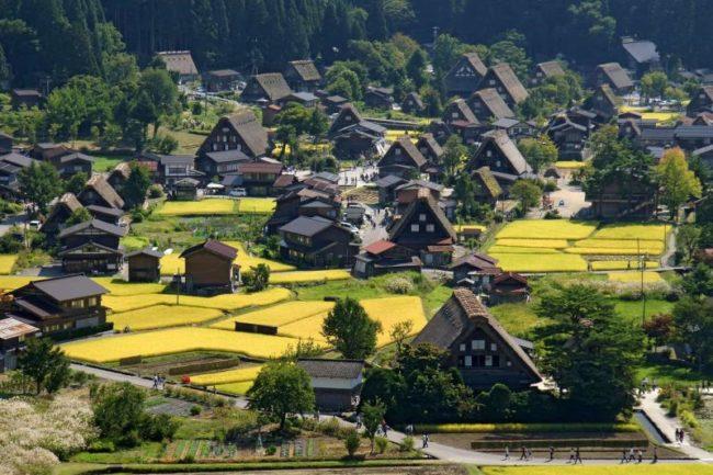 Governo Japonês oferece casas